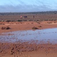day-5-muddy